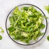 CHOPPED GREEN SALAD WITH HOMEMADE RANCH DRESSING